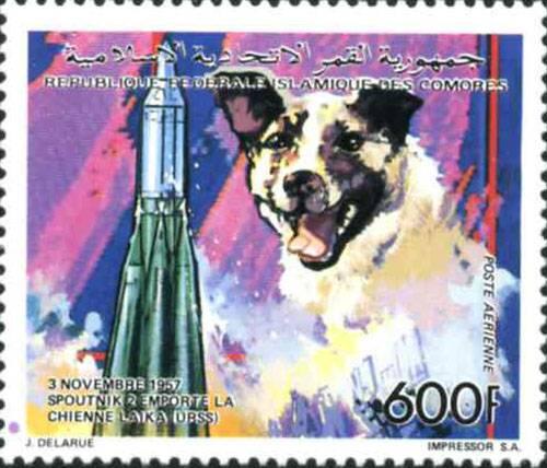 представляю почтовую марку выпущенную в 1992 году на Коморских островах.