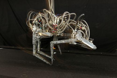 Робот Cheetah – модель экспериментальная.