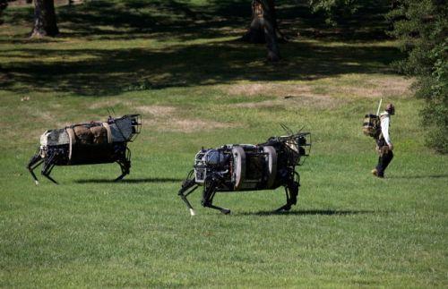 "Legged Squad Support System (LS3). Он же AlphaDog. Он же ""робомул""."