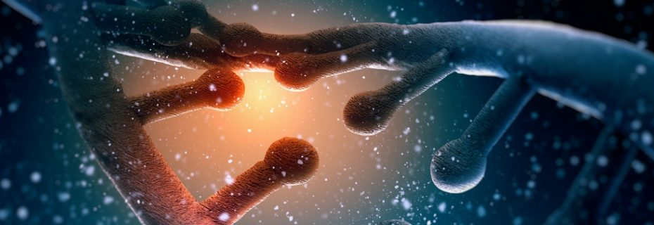 ДНК - гены НЛО
