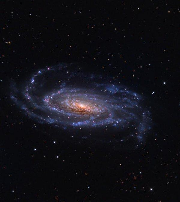 Галактика М106: красота в исполнении астрофотографа